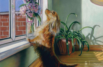 'Heaven Scent' Limited Edition Giclee Print featuring a dachshund. Original Art by Northern Irish artist Emma Colbert.