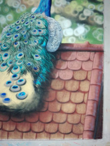 Peacock Progress 17