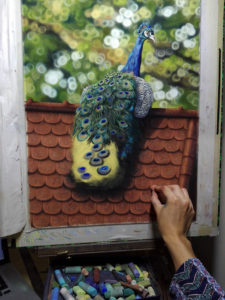 Peacock Progress 19