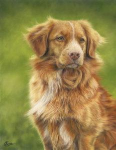 Riach's portrait