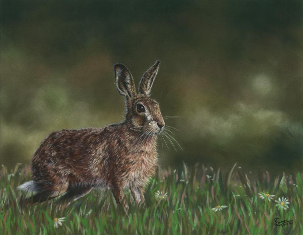 'Summer Meadow' Limited Edition Giclee Print featturing a brown hare. Original Art by Northern Irish artist Emma Colbert.