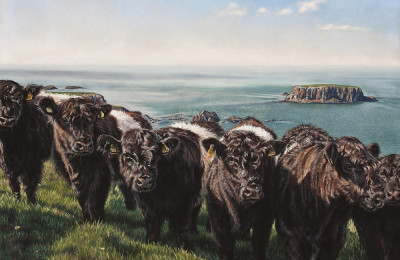 'The Belties' Limited Edition Giclee Print featuring Belted Galloway cows. Original Art by Northern Irish artist Emma Colbert.