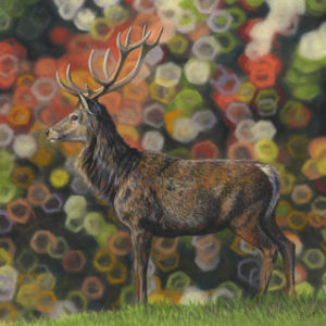 'Be Still My Hart' Limited Edition Giclee Print featturing a red deer in Gosford Park. Original Art by Northern Irish artist Emma Colbert.