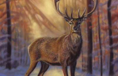 'Hart of Gold' Limited Edition Giclee Print featturing a red deer in Gosford Park. Original Art by Northern Irish artist Emma Colbert.