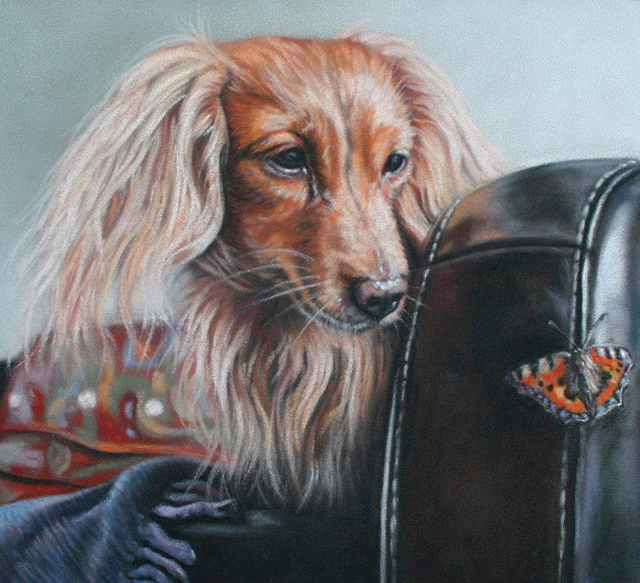 'Fleeting Friendship' Limited Edition Giclee Print featuring a dachshund and a moth. Original Art by Northern Irish artist Emma Colbert.