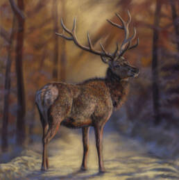 'The Hart of Winter' Limited Edition Giclee Print featturing a red deer in Gosford Park. Original Art by Northern Irish artist Emma Colbert.