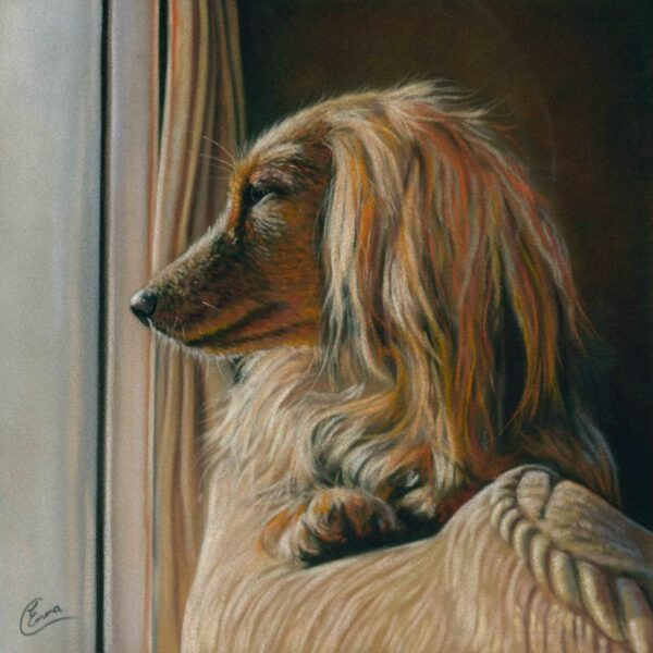 'The Sunny Spot' Limited Edition Giclee Print featuring a dachshund. Original Art by Northern Irish artist Emma Colbert.