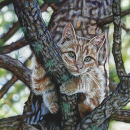 'The Lookout' Limited Edition Giclee Print featuring a cat in a tree. Original Art by Northern Irish artist Emma Colbert.