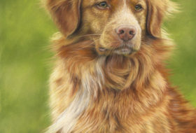 Riach the Toller