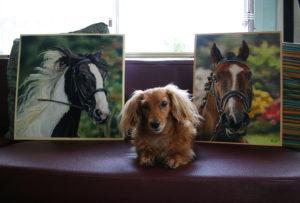Horseportrits