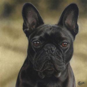 Louis finished portrait
